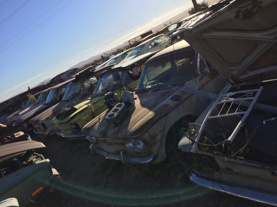 BBSS Dolan Springs Auction